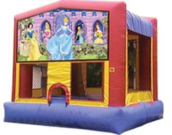 Disney Princesses Banner Theme for Bounce Houses